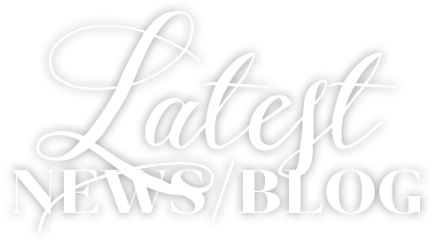 Latest News & Blog